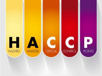 06mediconsult-corso-haccp